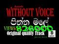 pinna male karaoke | without voice | with sinhala iyrics|