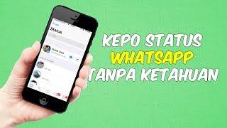Cocok Buat yang Suka Kepo, Cara Gampang Melihat Status Whatsapp Orang Lain Tanpa Ketahuan