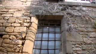 preview picture of video 'Patrimoine France Perigord la ville médiévale de Sarlat-la-Canéda'