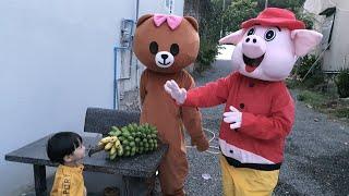 Gấu Lầy Brown & Heo Con Dễ Thương Đến Thăm Tin Siêu Còi