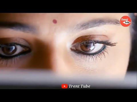 Whatsapp status tamil love song download mp4 | Tamil Whatsapp Status