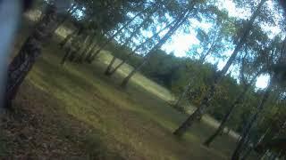 Ставропольский ботанический сад и квадрокоптер