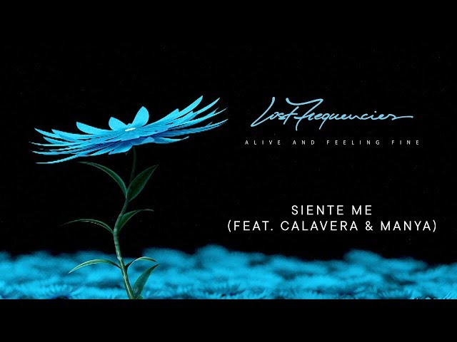Siente Me (Feat. Calavera & Manya) - LOST FREQUENCIES