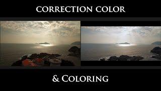 Colorización de vídeo profesional