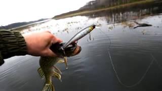 Озеро щучье уфа рыбалка