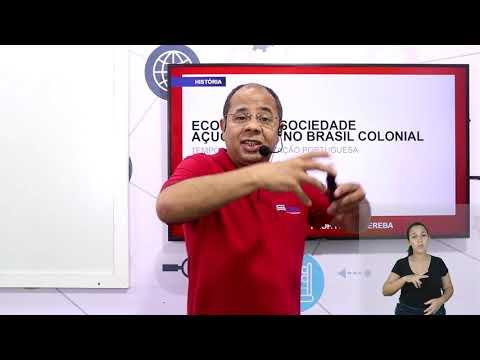 Aula 08 | Economia e sociedade - Parte 01 de 03 - História