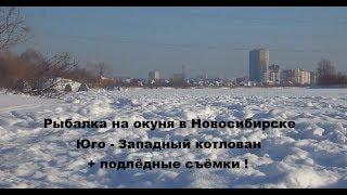 Рыбалки зимой в новосибирске