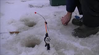 Рыбалка на ельца подледная