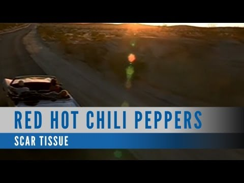 Red Hot Chili Peppers - Scar Tissue (Official Music Video)