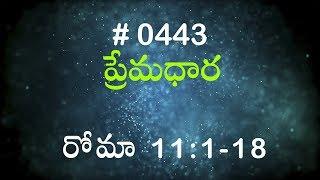 1 సమూయేలు 6 & 7 (#0367) Telugu Bible Study Premadhara