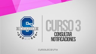 Consultar Notificaciones