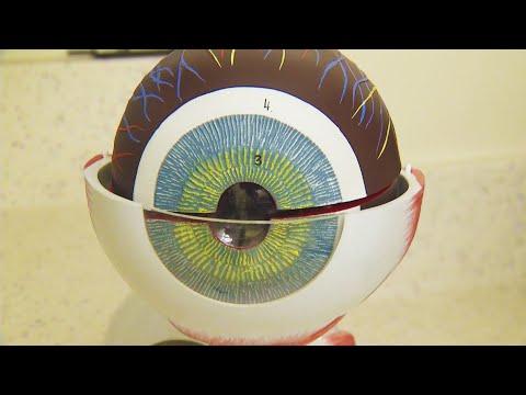 Hogyan lehet kideríteni a látásomat
