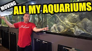 ALL MY AQUARIUMS AND FISH - HOW I WILL MOVE THEM! The king of DIY