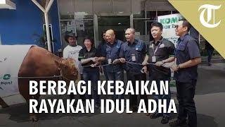 Bintang Toedjoe Kerja Sama dengan Tribunnews Berbagi Kebaikan di Perayaan Kurban
