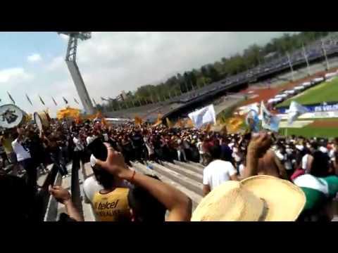 """La rebel pumas vs chemos"" Barra: La Rebel • Club: Pumas"