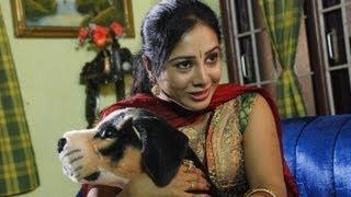 Hit Tamil Song - Nadanthadhu Edhuvo (Movie: Bommai Naigal)