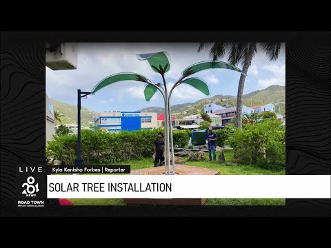 OPTree installed in the British Virgin Islands