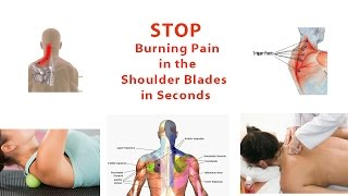 Stop Burning Pain in Shoulder Blades in Seconds (Simple Trigger Point Release Technique)  Dr Mandell