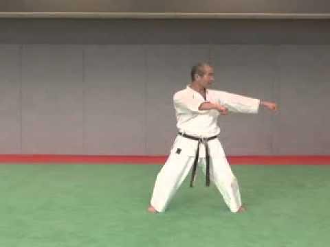 7. Naihanchi Wado Ryu