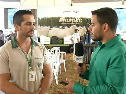 Uso de drones auxilia produtor na agricultura de precisão