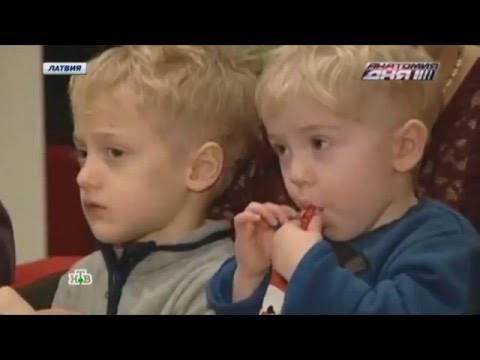 Русская семья сбежала из Британии, спасая детей от ювенальной юстиции