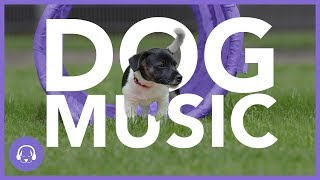 Dog Music: New Year Relaxation Sounds for Dogs! (2020)