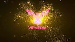 VIPMEDIA LOGO 1