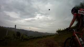 preview picture of video '2012-05-20 Monteveglio (v05)'