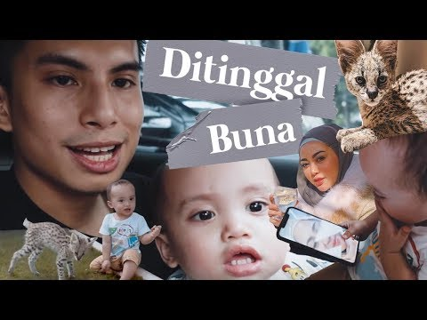 MEET OUR NEW FAMILY MEMBER MUEZZA THE SERVAL + DITINGGAL BUNA KE TURKI