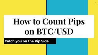Bitcoin-PIP-Gewinnrechner