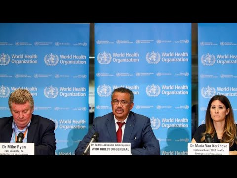 WHO holds briefing on coronavirus as cases near 20 million