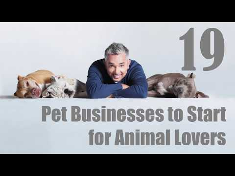 , title : '19 Pet Businesses to Start for Animal Lovers | Sameer Gudhate