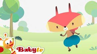 Rocco   BabyTV Brasil