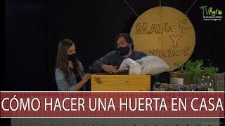 Como hacer una huerta en casa - TvAgro por Juan Gonzalo Angel Restrepo