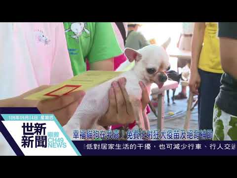 幸福貓狗在我嘉!免費注射狂犬疫苗及絕育補助