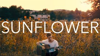 (Paddy Sun) Sunflower - Fingerstyle Guitar Cover