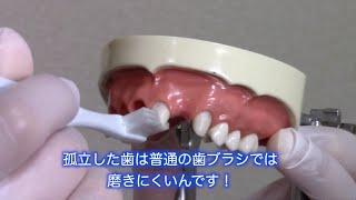 医療法人社団 スガタ歯科医院