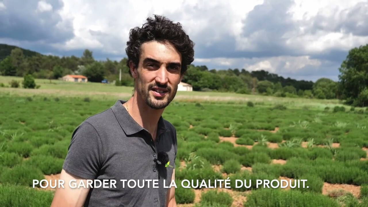 Portrait de jeune coopérateur : Simon s'est installé grâce aux plantes aromatiques