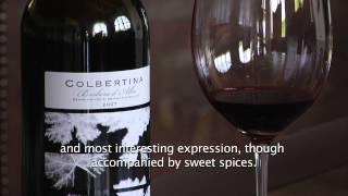 Colbertina - Barbera d