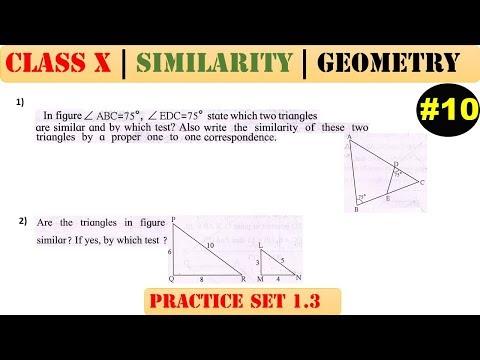 Similarity [Part 10] | Class 10 | Practice set 1.3 (MATHS 2) | Mah. (SSC) Board | Q1 and Q2