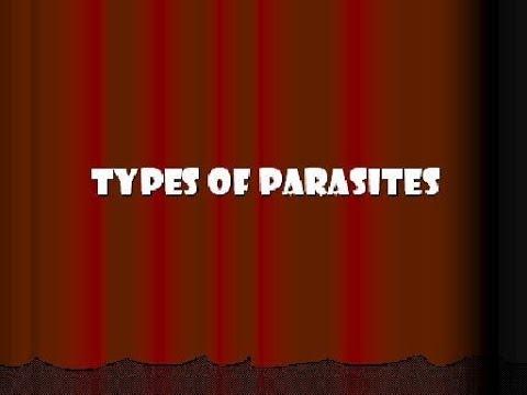 Szóda gyógyszer az emberek parazitáira