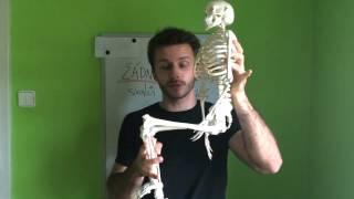 Posilování břišních svalů pomocí nohou