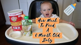 How Much To Feed A 6 Month Old Baby   Feeding Schedule Of A 6 Month Old Baby