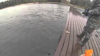 Рыбалка копанское озеро
