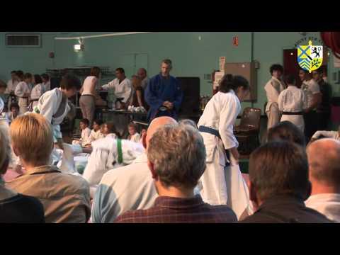 Gala de judo 2011