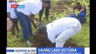 SAVING LAKE VICTORIA: Efforts start to bear fruits, 20,000 acres recovered