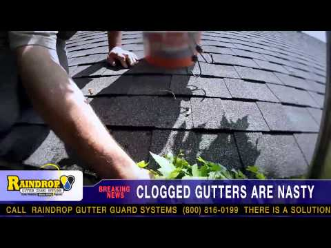 Clogged Gutters Are Nasty | Breaking News From RainDrop Gutter Guard