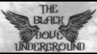 The Black Dove Underground - DOIN WORK!