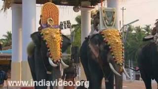Nadaswaram recital at Sree Sundareswara Temple, Kannur