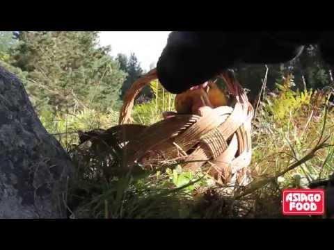 Trattamento di un fungo di ununghia darsonval